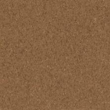 Armstrong Premium Excelon Crown Texture Patina 5C244031