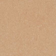 Armstrong Premium Excelon Crown Texture Camel Beige 5C805031