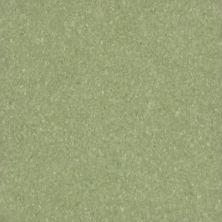 Armstrong Premium Excelon Crown Texture Little Green Apple 5C866031