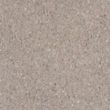 Armstrong Premium Excelon Crown Texture Taupe 5C901031