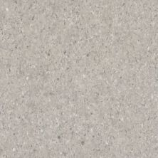 Armstrong Premium Excelon Crown Texture Pewter 5C908031