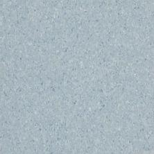 Armstrong Premium Excelon Crown Texture Lunar Blue 5C932031