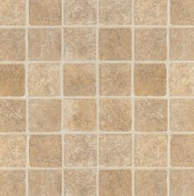 Armstrong Memories French Paver Tan 62962401