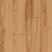 Armstrong Premier Classics Natural Hickory 78282081