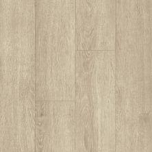 Armstrong Premier Classics Lakeside Oak 78288081