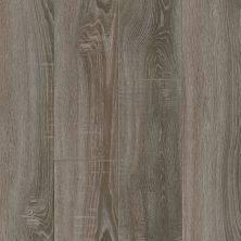 Armstrong Premier Classics Hearthstone Gray Oak 78291081