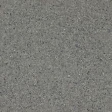 Armstrong Corlon Granite Gray 88701271