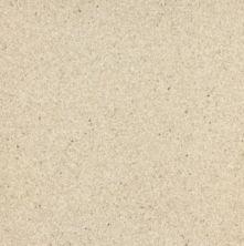 Armstrong Corlon Limestone 88712271