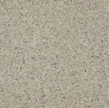 Armstrong Corlon Otter Gray 88717271