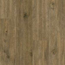 Armstrong Luxe Plank Value Patina A6795721