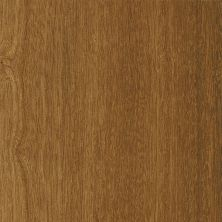 Armstrong Luxe Plank Value Spice A6780721