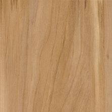 Armstrong Luxe Plank Value Breezewood Natural A6781721