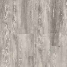 Armstrong Alterna Plank Ideal Candidate Opaque Passage D0003651