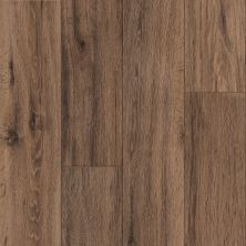 Armstrong Natural Personality Brushed Oak Caramel D1027651