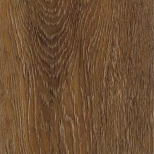 Armstrong Natural Living Planks Vintage Brown Oak D2420651