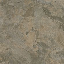 Armstrong Alterna Mesa Stone Gray/Brown D7107461