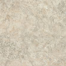 Armstrong Alterna Multistone Gray Dust D4121161