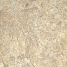 Armstrong Alterna North Terrace Beige/Taupe D4132161