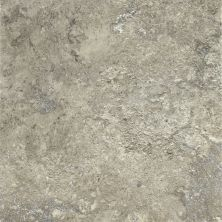 Armstrong Alterna Tuscan Path Dove Gray D7171461