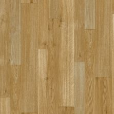Armstrong Flexstep Value Plus Oak Creek Golden Age G2479401