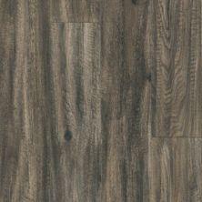 Armstrong Parallel USA 20 Sage Brown J5220641