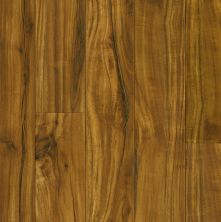 Armstrong Pryzm Native Acacia Golden PC005065