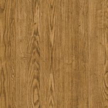 Armstrong Rustics Premium Homestead Plank Harvest Medley L6647121