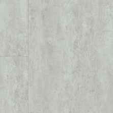 Armstrong Coalesce Platinum ST883811