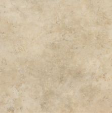 Armstrong Natural Creations Classics Beige TP508161
