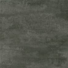 Armstrong Natural Creations Classics Black Silver TP715861