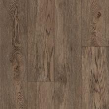 Armstrong Vivero Best Kingsville Oak Noble Brown U208266N