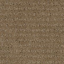Stainmaster Petprotect Stainmaster – Petprotect SIMPLE ELEGANCE Dark Straw 1661-13742