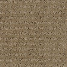 Stainmaster Petprotect Stainmaster – Petprotect SIMPLE ELEGANCE Gardenia Beige 1661-14252
