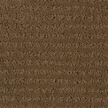 Stainmaster Petprotect Stainmaster – Petprotect SIMPLE ELEGANCE Special Beige 1661-18684