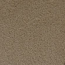 Stainmaster Petprotect Stainmaster – Petprotect SIMPLE ATTRACTION Gardenia Beige 3661-14252