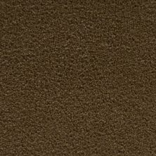 Stainmaster Petprotect Stainmaster – Petprotect SIMPLE ATTRACTION Cabriolet Brown 3661-76838