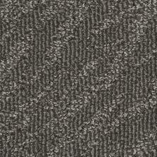 Stainmaster Petprotect Stainmaster – Petprotect PETIT BASSET Dark Mineral Grey A1635-84221
