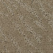 Stainmaster Petprotect Stainmaster – Petprotect PETIT BASSET Gardenia Beige A1635-14252