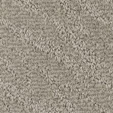 Stainmaster Petprotect Stainmaster – Petprotect PETIT BASSET North American Grey A1635-89832