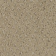 Stainmaster Petprotect Stainmaster – Petprotect SALUKI Gardenia Beige A1691-14252