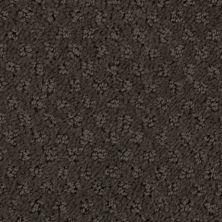 Stainmaster Petprotect Stainmaster – Petprotect SALUKI Taboo Brown A1691-76833