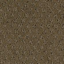 Stainmaster Petprotect Stainmaster – Petprotect SALUKI Cabriolet Brown A1691-76838