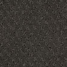 Stainmaster Petprotect Stainmaster – Petprotect SALUKI Dark Mineral Grey A1691-84221