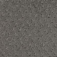 Stainmaster Petprotect Stainmaster – Petprotect SALUKI Metallic Grey A1691-89056