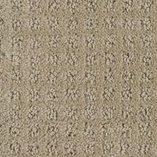 Stainmaster Petprotect Stainmaster – Petprotect BASENJI Gardenia Beige A1693-14252