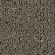 Stainmaster Petprotect Stainmaster – Petprotect BASENJI Burnt Leaf A1693-18926