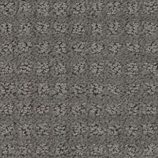Stainmaster Petprotect Stainmaster – Petprotect BASENJI Metallic Grey A1693-89056