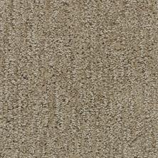 Stainmaster Petprotect Stainmaster – Petprotect FOXHOUND Gardenia Beige A1697-14252