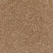 Tryesse MINOTAUR SAND A4525-16970