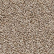 Stainmaster Petprotect Stainmaster – Petprotect BRIARD Sand A4671-16970